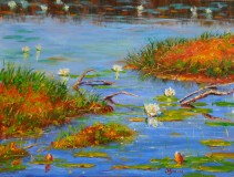 Lily Pond Pointers