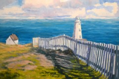 Fencing with Cape Spear